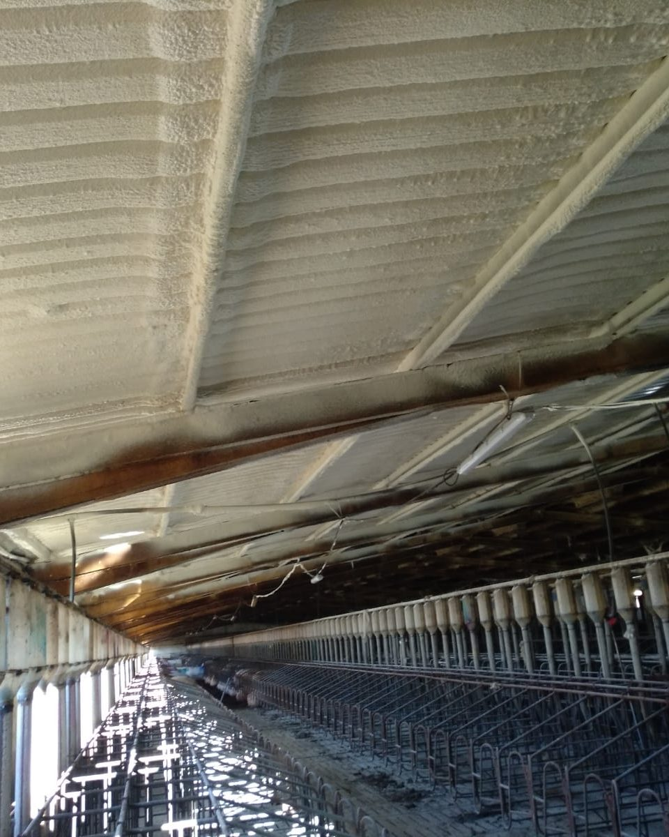 techo nave Aislamientos Ayara